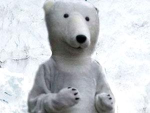 rostovaya kukla belyj medved a min